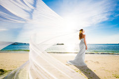 Beautiful fiancee in white wedding dress and big long white train, stand on shore sea at sunset stock photo