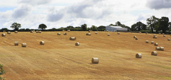 Beautiful field with straw bales in irish Stock Photography
