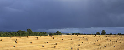 Beautiful field with straw bales and storm clouds Stock Image