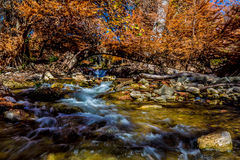 Beautiful Fiery Orange Fall Foliage on the Swift Waters of the Guadalupe River, Texas. Royalty Free Stock Photos