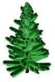 Beautiful fir Royalty Free Stock Image