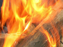 Beautiful fire Royalty Free Stock Photos
