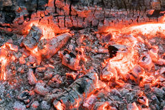 Beautiful fire with bright glowing coals Royalty Free Stock Photo