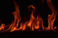 Beautiful fire flames on black background Royalty Free Stock Photography
