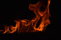 Beautiful fire flames on black background Royalty Free Stock Image