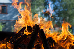 Beautiful fire with flames charred wood Royalty Free Stock Photography