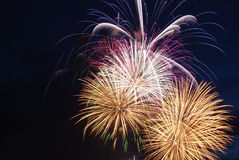 Beautiful firework Stock Image