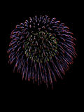 Beautiful firework Royalty Free Stock Photography