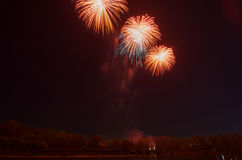 Beautiful firework in honor of the Moscow Victory Day Parade. Royalty Free Stock Image