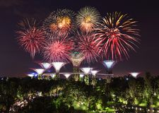 Beautiful firework over Gardens by the bay at night, Singapore Royalty Free Stock Photos