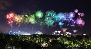Beautiful firework over Gardens by the bay at night, Singapore Royalty Free Stock Image