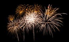 Beautiful firework Royalty Free Stock Photo