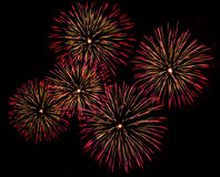Beautiful firework. Show for celebration royalty free stock photos