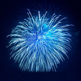 Beautiful fireworks Royalty Free Stock Photo