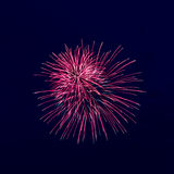 Beautiful fireworks against the dark sky Royalty Free Stock Photos