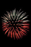 Beautiful fireworks on the black sky background Royalty Free Stock Photography