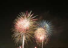 Beautiful fireworks burst in midair background. Wonderful festival fireworks show , TX USA Royalty Free Stock Image