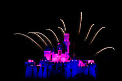 Beautiful fireworks at Disneyland at night Royalty Free Stock Image