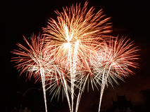Beautiful fireworks in celebrate day Stock Images