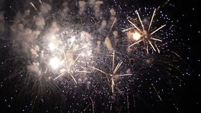 Beautiful Fireworks Exploding On Black Background stock video footage