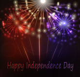 Beautiful fireworks in national flag colors. For American Independence Day celebrations Stock Photography