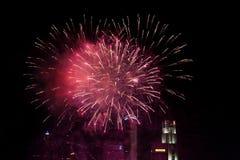 Beautiful fireworks at night city sky Stock Photography