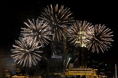 Beautiful fireworks at night city sky Stock Photo