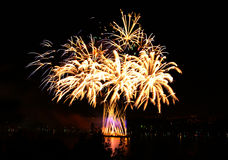 Beautiful fireworks in a night skies Royalty Free Stock Image