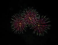 Beautiful fireworks in the night sky Royalty Free Stock Image
