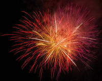 Beautiful fireworks at night Stock Images