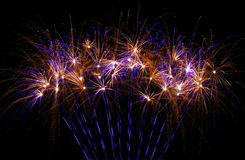 Beautiful fireworks in purple and gold Stock Images