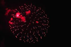 Beautiful fireworks red flowers on the night sky. Brightly fireworks on dark black color background. Holiday relax time with royalty free stock photo