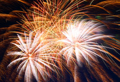 Beautiful fireworks show Royalty Free Stock Image