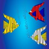 Beautiful fish Stock Image