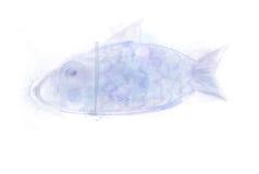 Beautiful Fish abstract aquarel watercolor. Illustration. Drawn. Blue colors Royalty Free Stock Photo