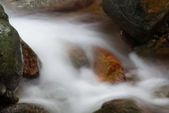 Beautiful fish liked stone with waterfall on a rocky stream Stock Photography