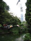 Beautiful fish pond in Kowloon park, Hong Kong stock photo