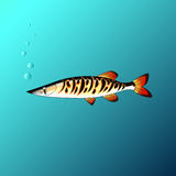The Beautiful fish under the water in the game style. Beautiful fish under the water in the game style Stock Image