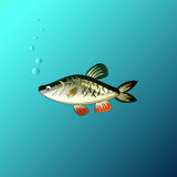 The Beautiful fish under the water in the game style. Beautiful fish under the water in the game style Stock Photos