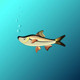 The Beautiful fish under the water in the game style. Beautiful fish under the water in the game style Stock Photo