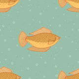 Beautiful fish vector. Seamless fish pattern background. Royalty Free Stock Photography