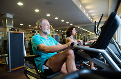 Beautiful fit senior couple in gym doing cardio work out. Royalty Free Stock Photo