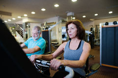 Beautiful fit senior couple in gym doing cardio work out. Stock Image