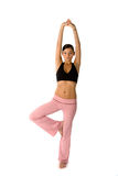 Beautiful fit woman. Beautiful young and fit woman is stretching before her workout Stock Photography