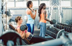 Beautiful fit woman exercising bicep curls with dumbbells at the gym. Side view of a beautiful fit women exercising bicep curls with heavy dumbbells while stock photography