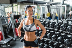 Beautiful Fit Woman in Gym royalty free stock image