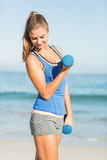 Beautiful fit woman holding dumbbells Stock Photography