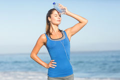 Beautiful fit woman putting water bottle in her head Stock Image