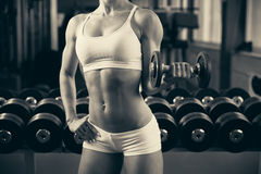 Beautiful fit woman working out in gym - girl in fitness Royalty Free Stock Photo