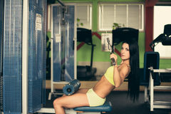 Beautiful fit woman working out in gym - girl in fitness Royalty Free Stock Photos